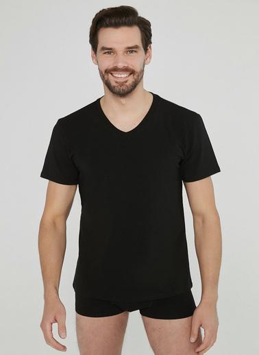 Penti Siyah Basic V Yaka Regular 2Li Tişört Siyah